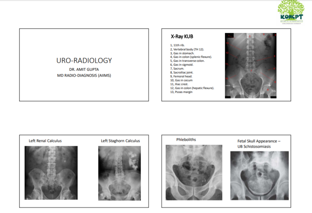 URO-RADIOLOGY KONCPT NEXT